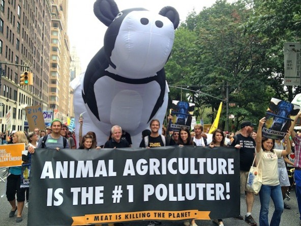 Peoples-Climate-March-Cowspiracy-Lineup-592x444