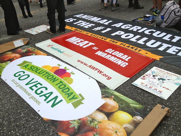 Peoples-Climate-March-Signs-Laid-Out-On-Ground